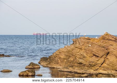 Sea View With Gulls On A Searock In The Foreground And A Steamship In The Distance, At Sozopol, Bulg