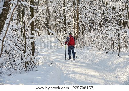 Skiing Man In City Forest Park Sokolniki At Sunny Winter Day. Winter Ski Sport Free Style. Winter Sk