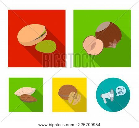 Hazelnut, Pistachios, Walnut, Almonds.different Kinds Of Nuts Set Collection Icons In Flat Style Vec