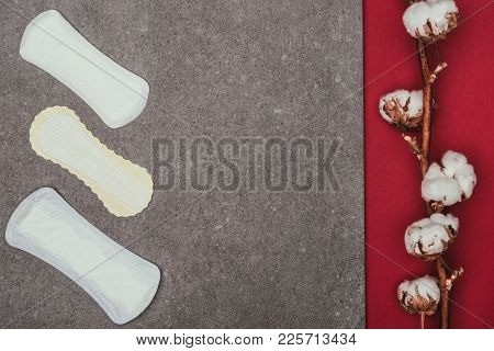 Top View Of Arranged Menstrual Pads And Cotton Twig