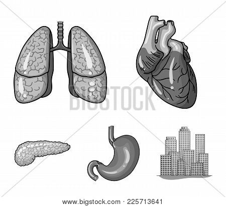 Heart, Lungs, Stomach, Pancreas. Human Organs Set Collection Icons In Monochrome Style Vector Symbol