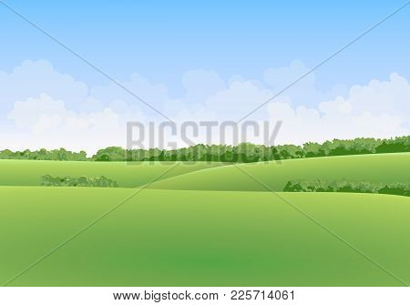 Green Summer Vector Landscape With Meadows And Trees In The Background With Clouds In Blue Sky
