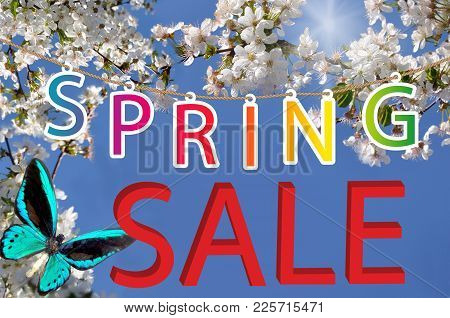 Letter Spring Sale On  Background With Butterfly And White Flowers To Cherries On Background Sky