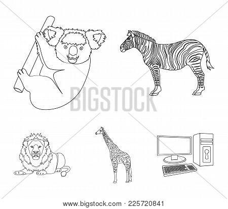 African Zebra, Animal Koala, Giraffe, Wild Predator, Lion. Wild Animals Set Collection Icons In Outl