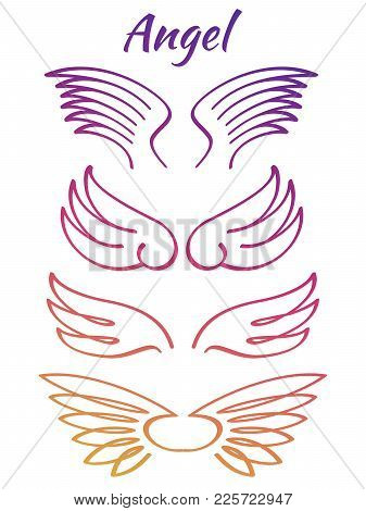 Colorful Elegant Angel Flying Wings Collection. Color Line Wings. Vector Illustration