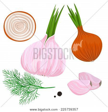 Yellow, Red And Spring Onion And Garlic. Isolated On White. Stock Vector.