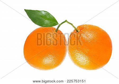 Isolated Oranges On White Background With Clipping Path As Packaging Design Element.