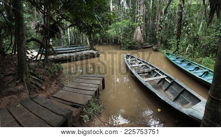 The Rainforest Wharf On Sandoval Lake Near Puerto Maldonado And Madre De Dios River, Amazon Peru