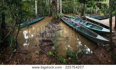 The Rainforest Wharf On Sandoval Lake Near Puerto Maldonado And Madre De Dios River, Amazon Peru
