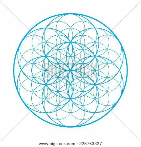 Vector Sacred Geometry Illustration: Flower Of Life, Also Known As Seed Of Life Or The Pattern Of Cr