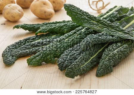 Heap of fresh picked raw cavolo nero leaves close up
