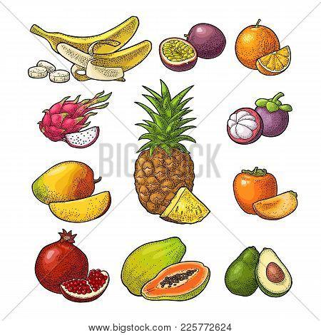 Set Fruits Isolated On White. Pineapple, Banana, Pomegranate, Maracuya, Mango, Avocado, Dragon, Oran