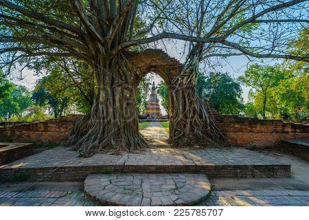 Ancient Old Pagoda In Frame Of Door Of Ruined Brick Wall Covered By Tree At Wat Phra Ngam Buddhist T
