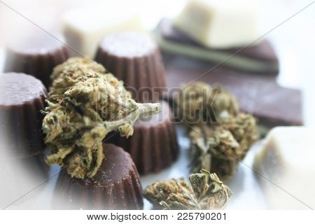 Chocolate Marijuana Edibles Stock Photo High Quality