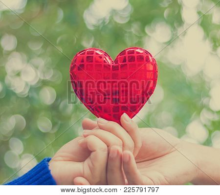 Hand Holding Heart Sign