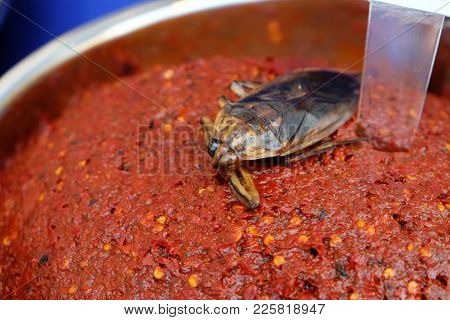 Male Pimp As Ingredient Of Red Chili Paste