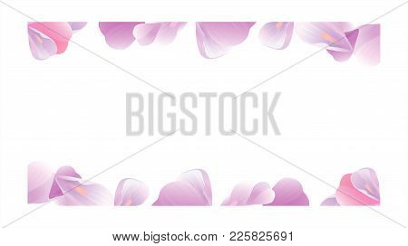 Petals Roses Flowers. Purple Violet Sakura Petals Frame Isolated On White Background. Vector Eps 10