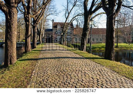 Driveway With Cobblestones And Tall Trees On Both Sides. The Road To The Entrance Of A Medieval Cast