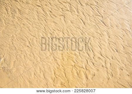 Sea Sand Surface Beach Brown Texture Background. Top View