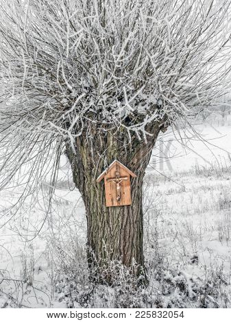 Roadside tree shrine on old willow tree covered with snow and frost