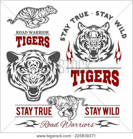 Tigers Custom Motors Club T-shirt Vector Logo On White Background. Premium Quality Bikers Band Logot