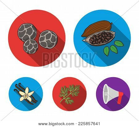 Fried Cacao Beans, Dill, Black Pepper, Vanilla.herbs And Spices Set Collection Icons In Flat Style V