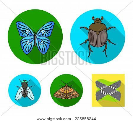 Wrecker, Parasite, Nature, Butterfly .insects Set Collection Icons In Flat Style Vector Symbol Stock