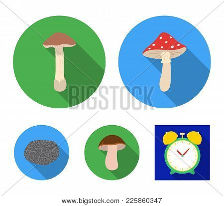 Amanita, Porcini, Black Truffle, Toadstool. Set Collection Icons In Flat Style Vector Symbol Stock I