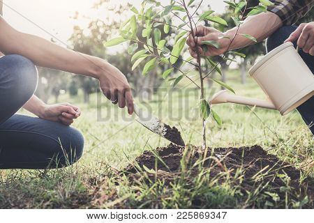 Young Couple Planting The Tree While Watering A Tree Working In The Garden As Save World Concept, Na