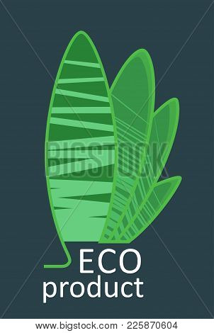 Ecology Leaves And Symbols - Stock Vector  Template For Your Business Company. Creative Abstract Con