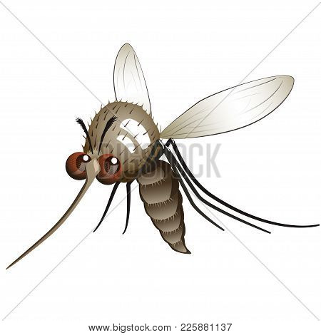 Comical Mosquito. Cartoon Character Flying Mosquito Over White Background.