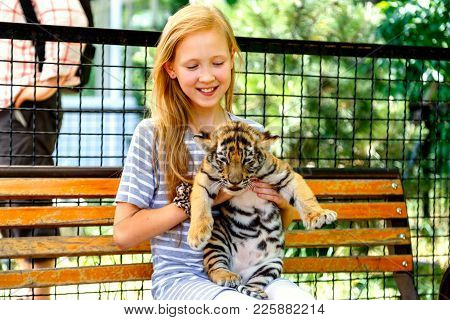 The Girl Is Holding A Small Red Tiger