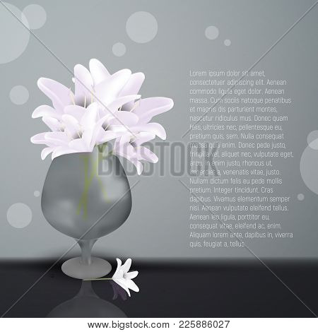 Lily Flowers In Glass Vase. Vector Illustration Of Blooming Lilia With White Petals. Place For Your