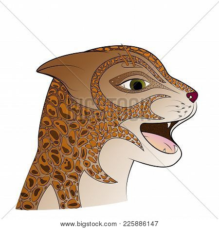 Red Head Wild Cat Vector Illustration. Zen Tangle Feline Face.