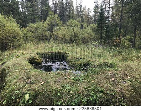 View Of The Wellspring In The Forest - Talovsky Bowl. Talovsky Bowls-limy Formations In The Form Of