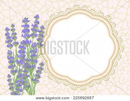 Lavender. Background With Lavender Flowers, Texture Crackle And Lace Border.