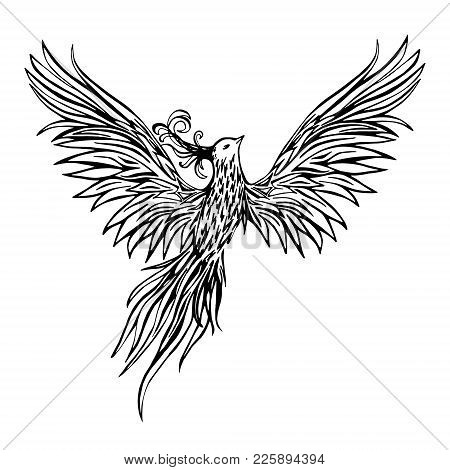 Hand Drawn Chinese Peacock Tattoo.asian Phoenix Fire Bird Tattoo Design. Illustration Isolated