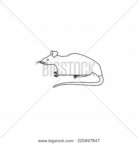 Rat Icon. Element Of Rodents Icon. Premium Quality Graphic Design Icon. Baby Signs, Outline Symbols