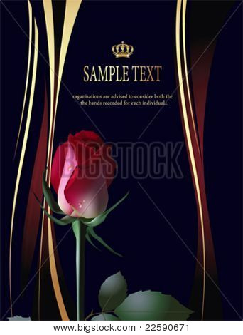 Black background with red rose. All elements and textures are individual objects. Vector illustration scale to any size