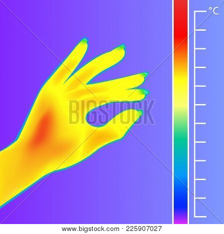 Thermal Imager Human Hand Vector Illustration. The Image Of A Silhouette Female Arm Using Infrared T