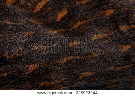 Brown Texture Of Spotted Fur On A Piece Of Fur Coat