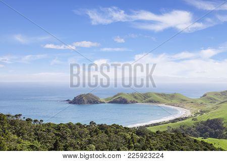 A View Over Port Jackson Coromandel New Zealand.