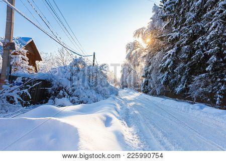 Beautiful Winter Landscape After A Snowfall