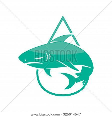 Shark Drop Water Logo Design Vector Isolated Concept Template