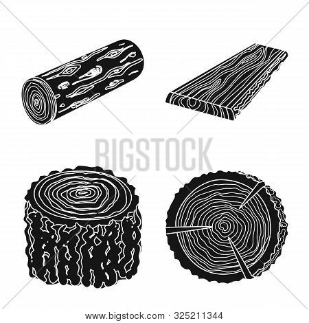 Isolated Object Of Hardwood And Construction Icon. Collection Of Hardwood And Wood Stock Symbol For