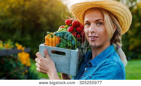 Young 30-35 Years Old Beautiful Woman Farmer Hat With Box Fresh Ecological Vegetables Garden Backgro