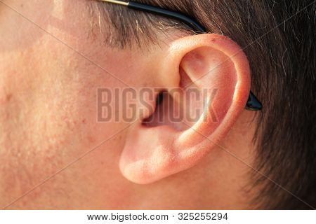 Ear Of A Happy And Cheerful Dark-haired Man