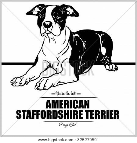 American Staffordshire Terrier Dog - Vector Illustration For T-shirt, Logo And Template Badges