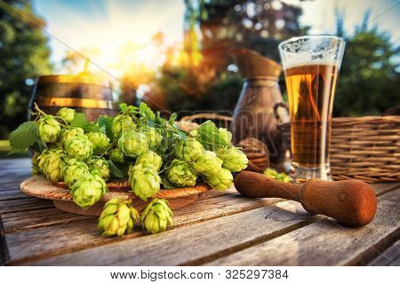 Fresh Cold Beer Glass In Rustic Setting With Fresh Hops