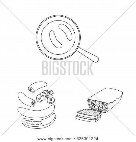 Vector Illustration Of Organic And Potassium Symbol. Collection Of Organic And Diet Vector Icon For